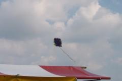 Boerendag Rijsbergen 5 augustus 2006