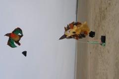 Lente vliegeren true colors 16 maart 2013