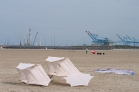 Vliegeren strand Zeebrugge (B) 2010