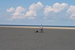 Strand Zeebrugge (B) 8 september 2013