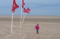 Vliegeren  strand Zeebrugge (B) 2013