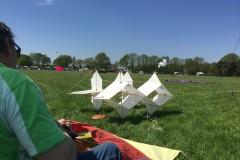 Vliegerfestival Valkenswaard 2016