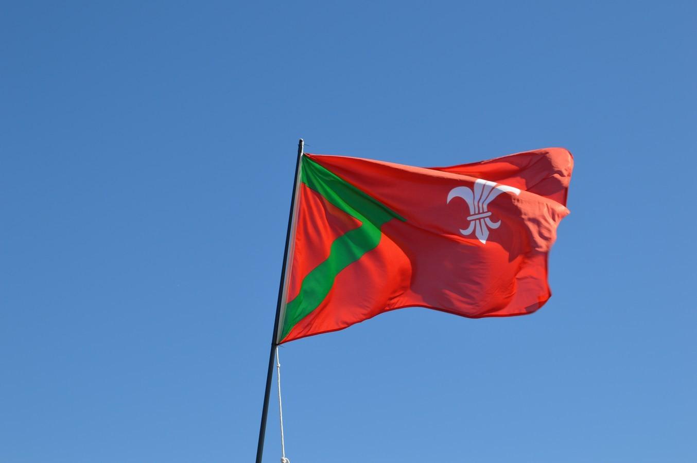 Rijsbergse vlag