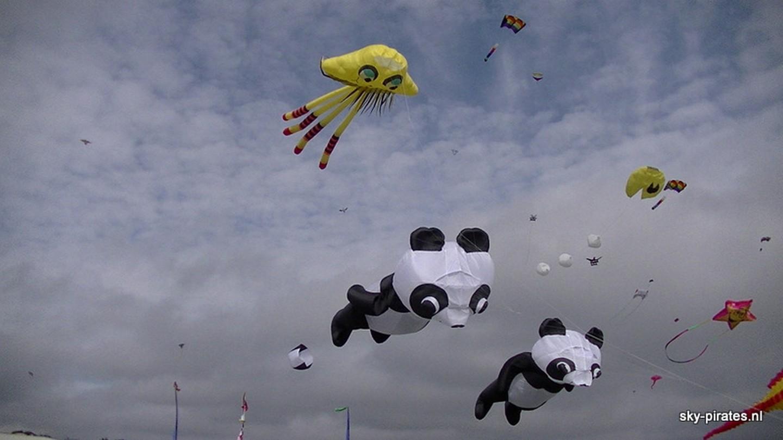 Jelli fish met de panda beren
