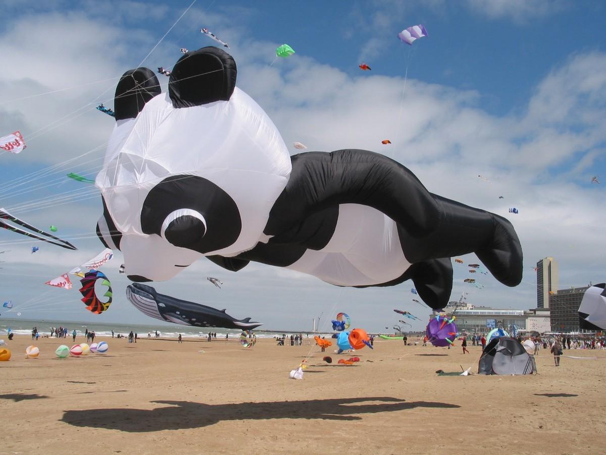 Panda (klein)