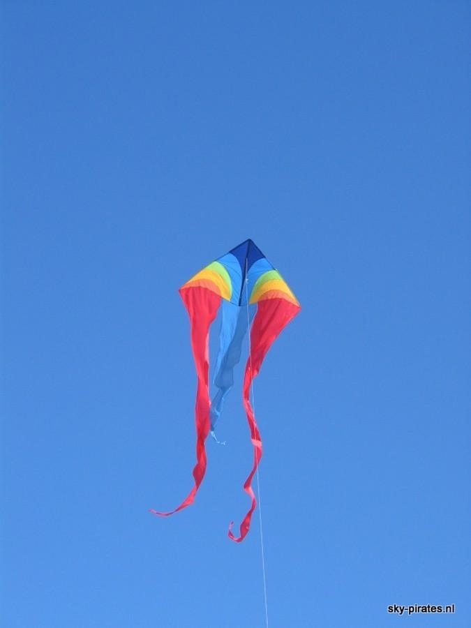 Schleierdelta rainbow