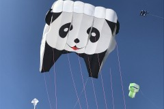 Panda lifter