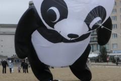 Panda beer (groot)